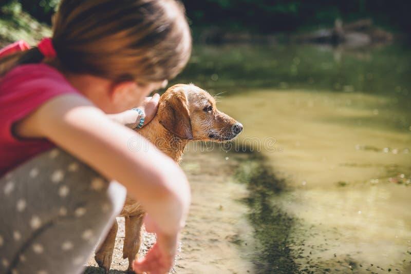 Trocas de carícias da menina seu cão fotografia de stock