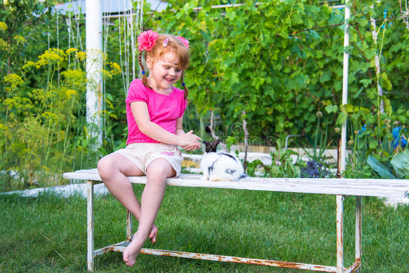 Trocas de carícias da menina um coelho em um banco imagens de stock