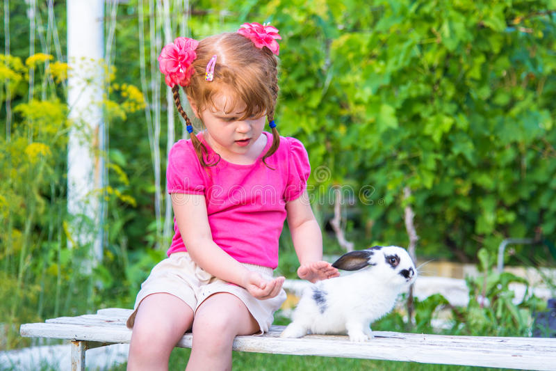 Trocas de carícias da menina um coelho em um banco fotografia de stock
