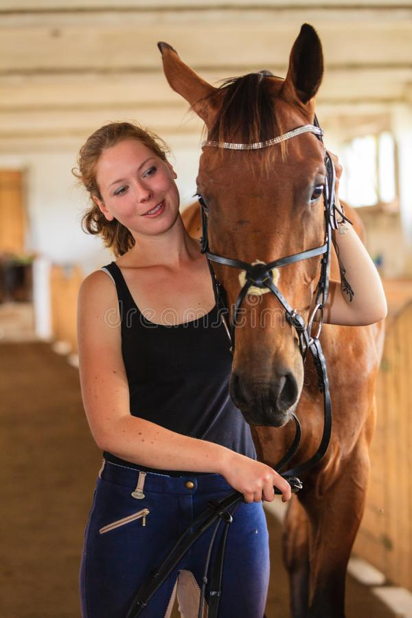 Trocas de carícias da moça do jóquei e aperto do cavalo marrom fotografia de stock
