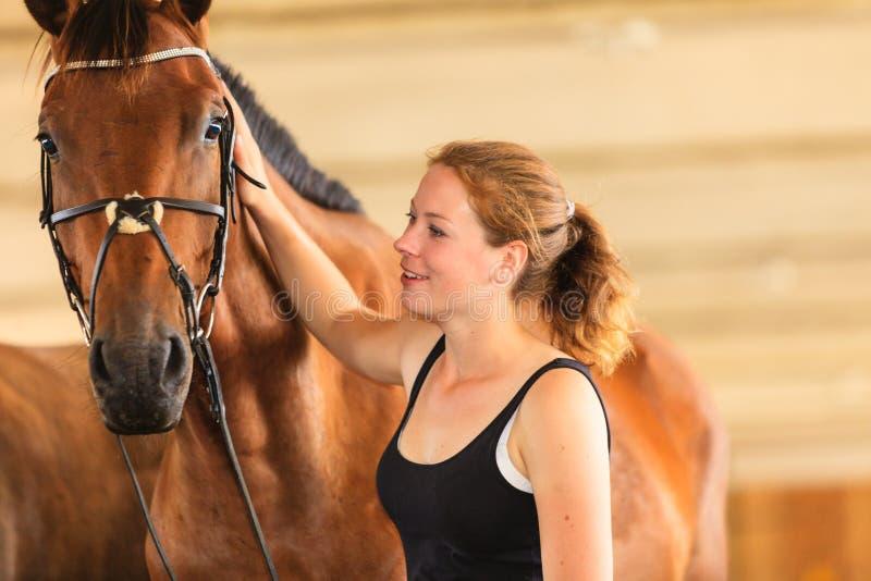 Trocas de carícias da moça do jóquei e aperto do cavalo marrom imagens de stock royalty free