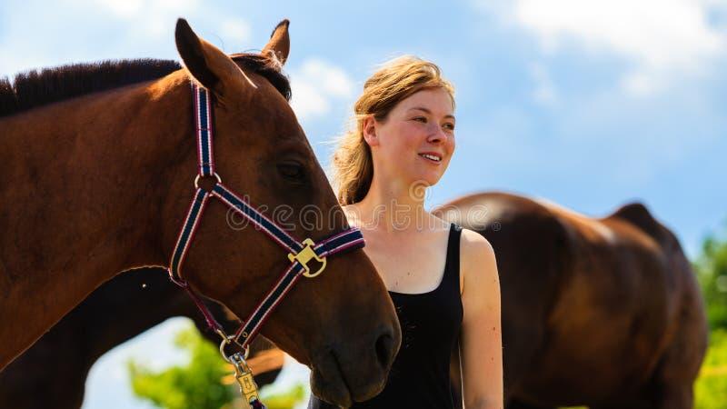 Trocas de carícias da moça do jóquei e aperto do cavalo marrom foto de stock royalty free