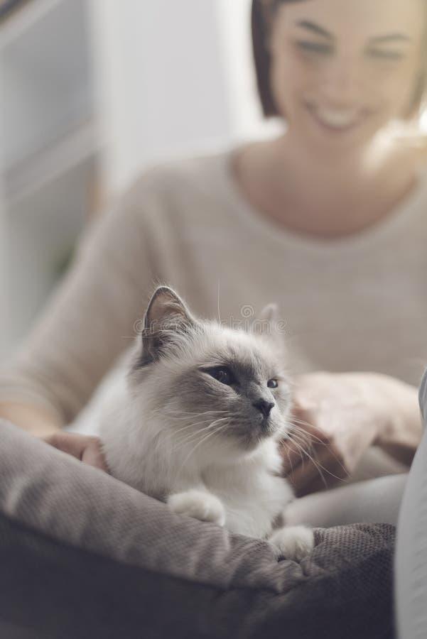 Trocas de carícias da mulher seu gato bonito foto de stock royalty free