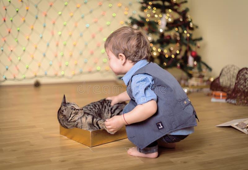 Trocas de carícias do menino um gato quando o olhar fotografia de stock royalty free