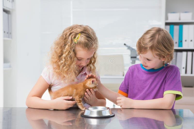 Trocas de carícias felizes dos proprietários seu comer do gato foto de stock royalty free