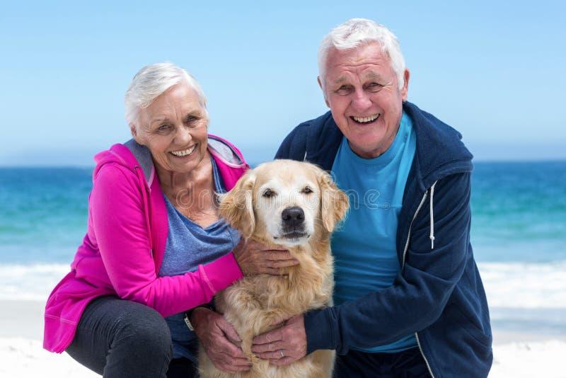 Trocas de carícias maduras bonitos dos pares seu cão fotos de stock royalty free
