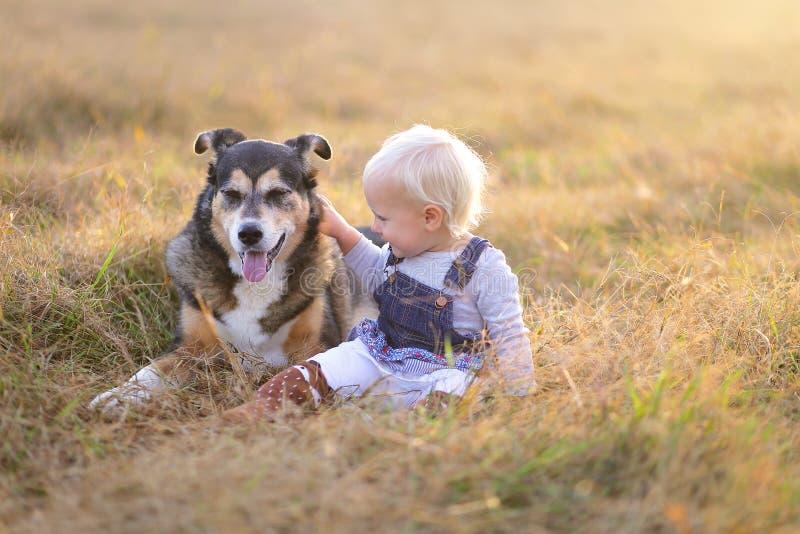 Trocas de carícias pequenas felizes da menina da criança seu pastor alemão Mix Breed fotos de stock royalty free