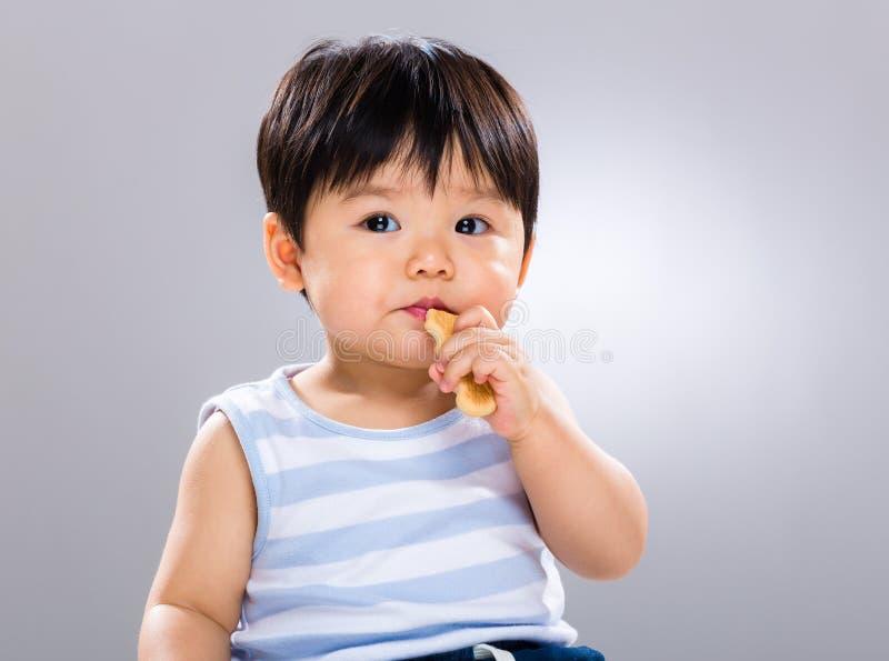 trochę chłopiec biskwitowy łasowanie zdjęcie royalty free