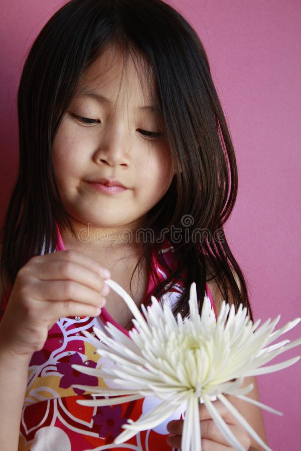 trochę kwiat azjatykcia dziewczyna obrazy royalty free