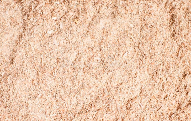 Trociny lub drewniany pył tekstury tło Drewniany trocinowy tła zbliżenie Trocinowa podłogowa tekstura Odgórny widok Saw pyłu teks obraz stock