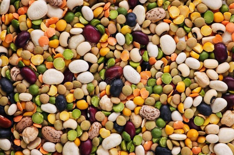 Trockene Bohnen und Erbsen lizenzfreie stockfotografie