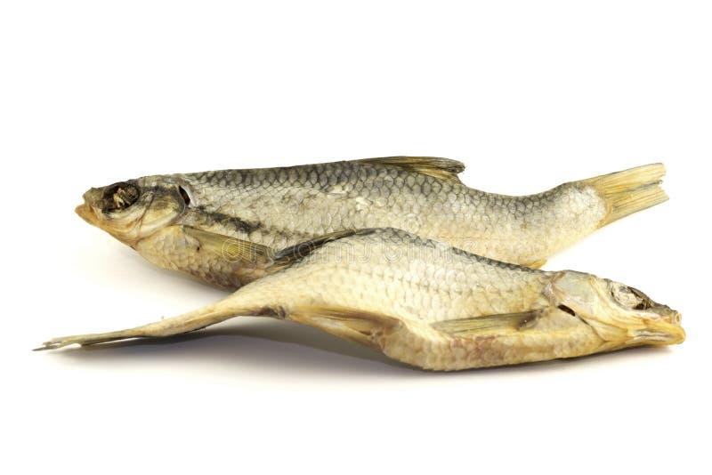 Trockene Fische lokalisiert auf weißem Hintergrund stockbild