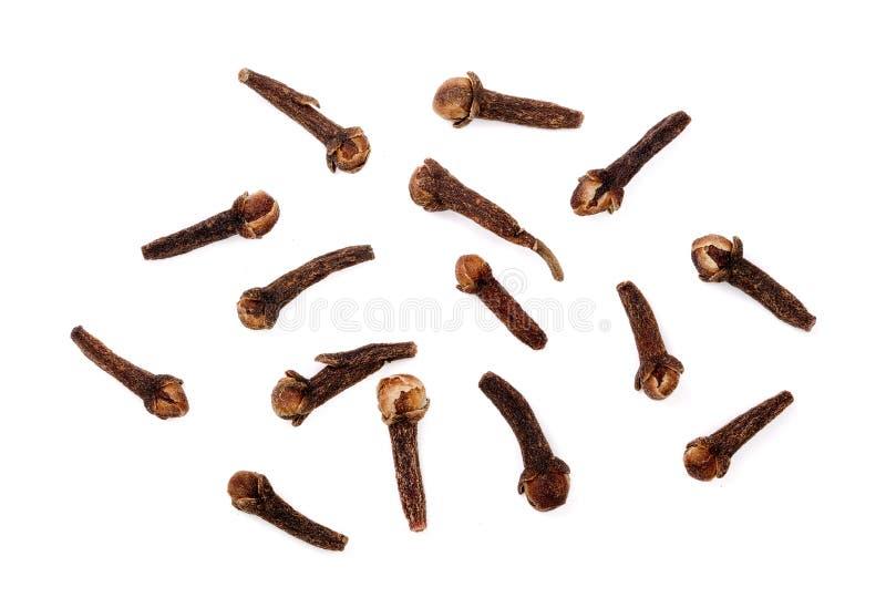 Trockene Gewürz-Nelken lokalisiert auf weißem Hintergrund stockfotografie