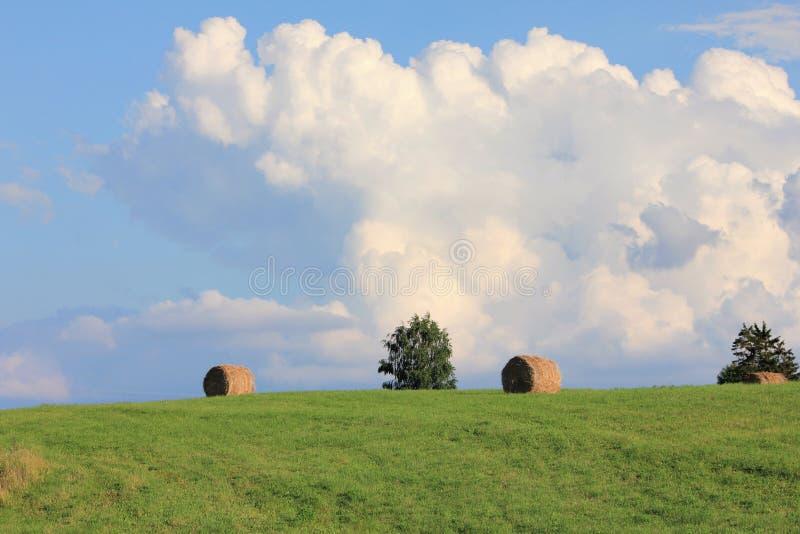 Trockene Heuschober nach Ernte auf einem grünen Sommerfeld mit großen Wolken und blauem Himmel stockfoto