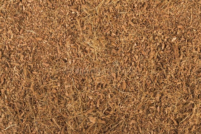 Trockene Kokosnuss-Coir lizenzfreie stockfotos