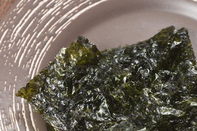 Trockene Meerespflanzenblätter lizenzfreie stockfotografie