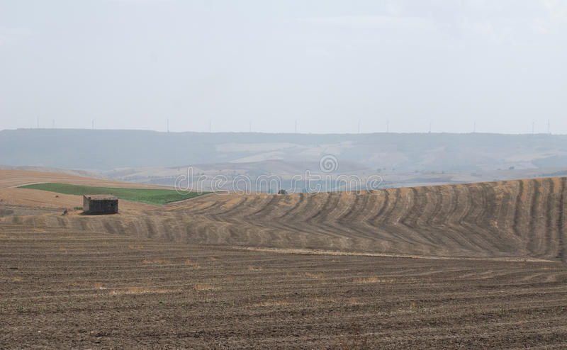 Trockene Pugliese-Landschaft stockfoto