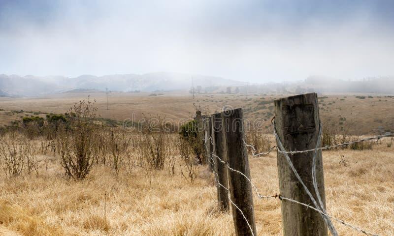 Trockene Rasenfläche bei Hearst San Simeon State Park stockfotos