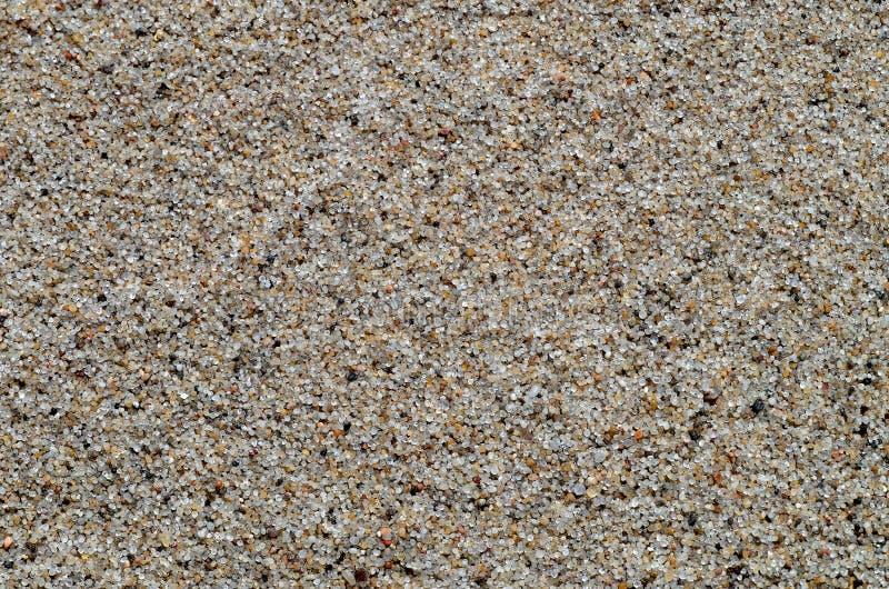 Trockene Sandnahaufnahme stockfotografie