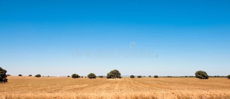 Trockene spanische Landschaft stockfoto