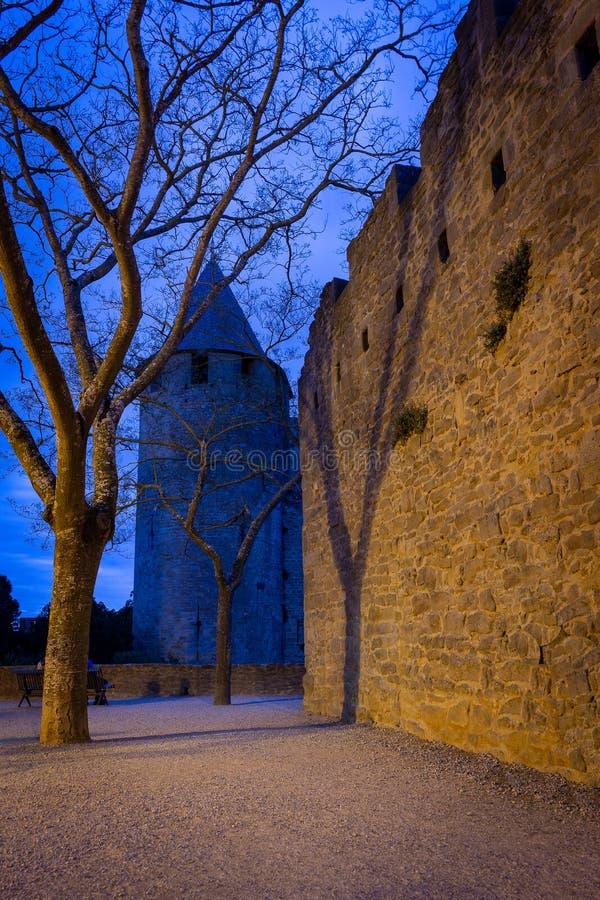 Trockener Baum im mittelalterlichen Schloss von Carcassonne in Frankreich, bei Sonnenuntergang stockbild