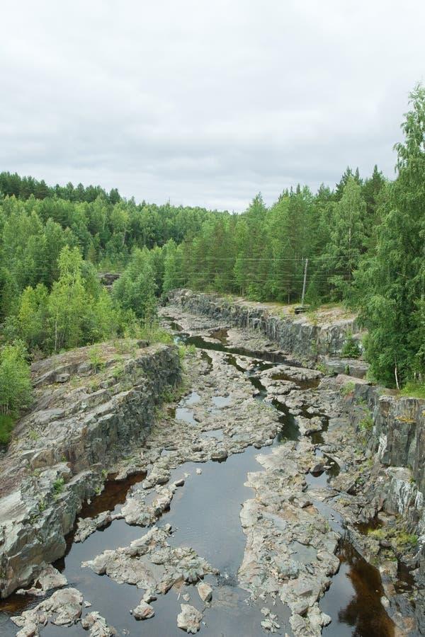 Trockener Riverbed stockbilder
