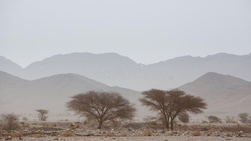 Trockener und heißer Tag in der Wüste von Sahara, Tata lizenzfreies stockbild