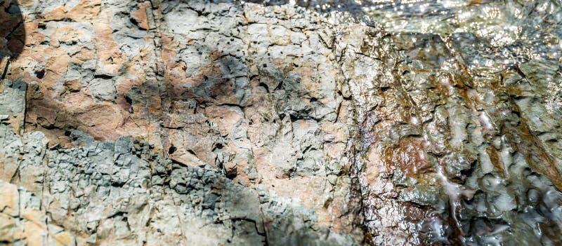 Trockener und nasser Felsen auf Flussbank stockfoto