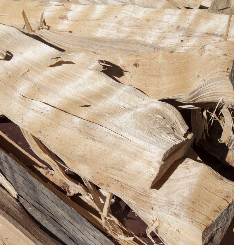 Trockenes birchen Brennholz lizenzfreie stockfotos