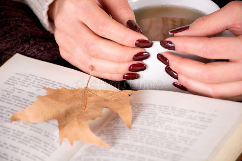 Trockenes Blatt des Herbstes auf Buch- und Mädchenhänden mit brauner Maniküre auf Nagelfinger hält Tasse Tee lizenzfreies stockfoto