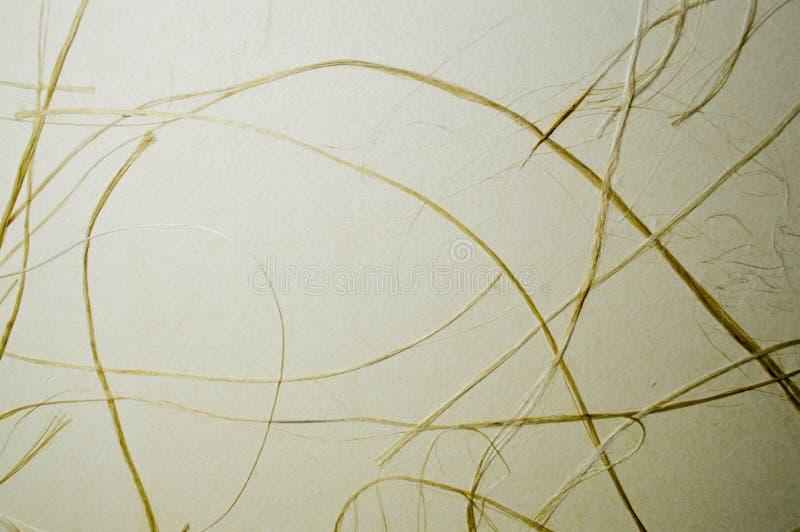 Trockenes gelbes Gras auf beige Papyrus, lizenzfreies stockfoto