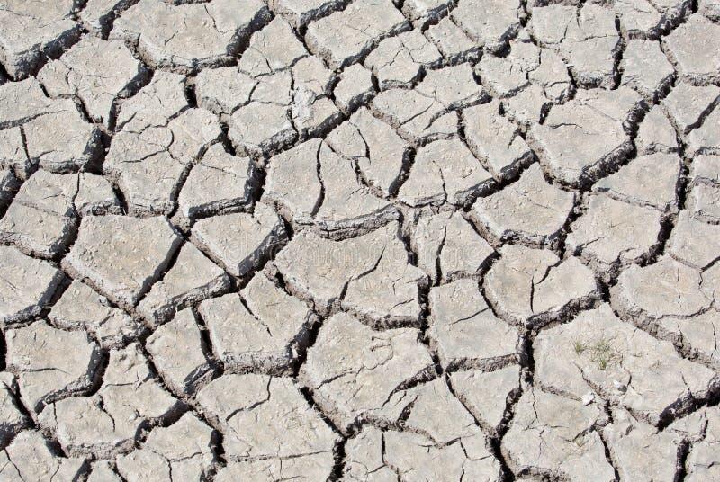 Trockenes Land stockfoto
