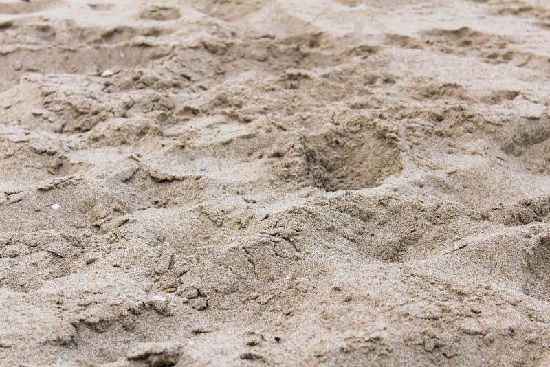 Trockenes schönes Design der Strand-Sand-Detailküstenlinie stockfotos