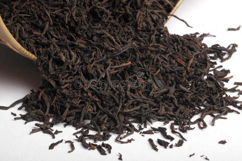 Trockenes Teeblatt lizenzfreies stockbild