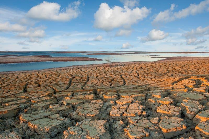 Trockenes Wüstenland lizenzfreie stockfotos