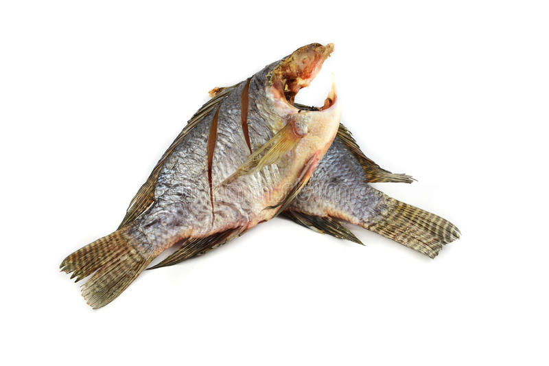 Trockenfisch Tilapia stockfotografie