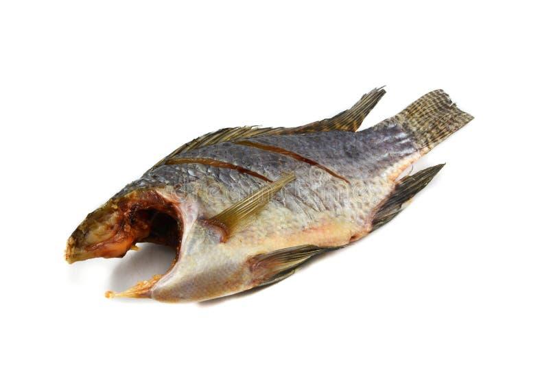 Trockenfisch Tilapia stockfotos
