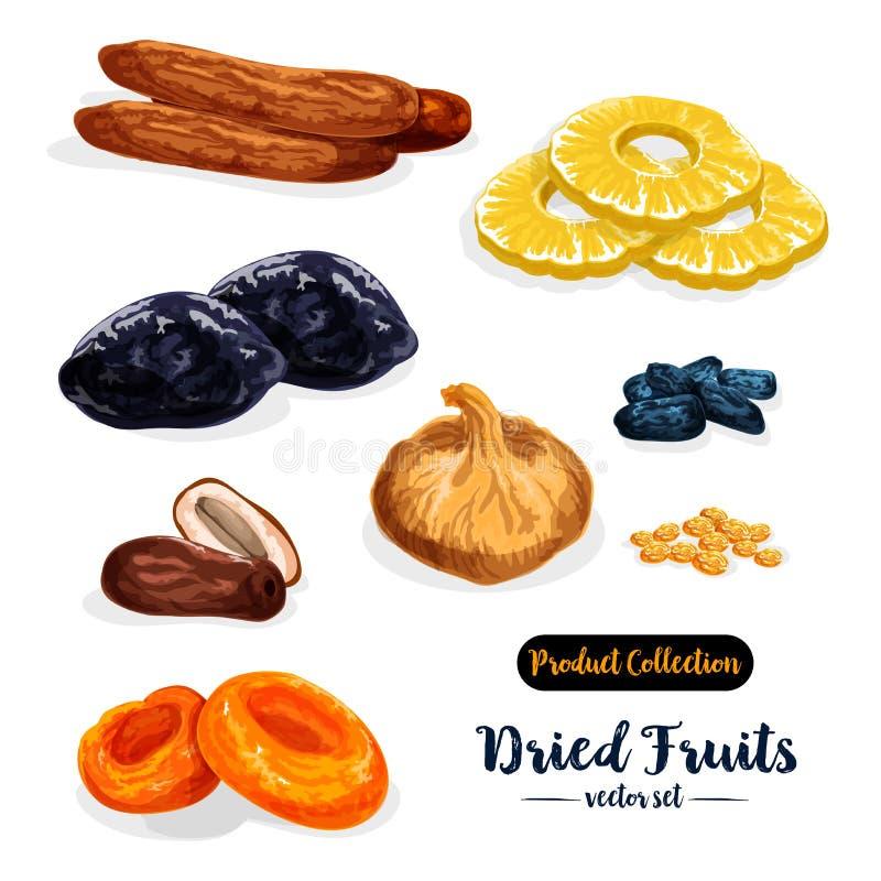 Trockenfrüchte, natürlicher Bonbonikonensatz, Lebensmitteldesign stock abbildung
