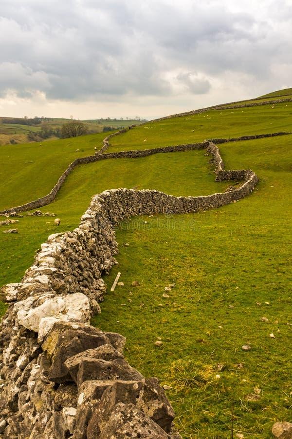 Trockenmauern schl?ngeln sich ihre Weise in die entfernten Felder auf dem Yorkshire festmacht nahe Malham, North Yorkshire stockfotografie