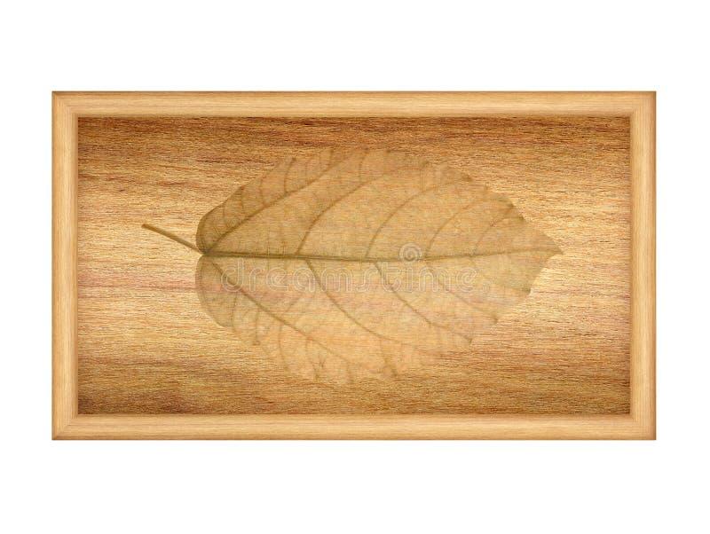 Trocknen Sie Blätter auf hölzerner Beschaffenheit stockbild