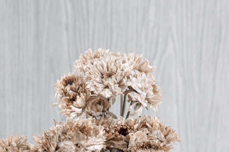 blumenstrauss trocknen download sie vom chrysanthemen blumen blumenstraua stockbild bild von d0 sterben mit waschpulver
