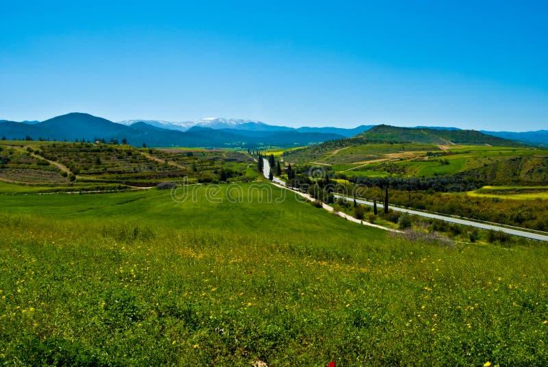 trodos de natur de montagnes d'horizontal de la Chypre sauvages photographie stock