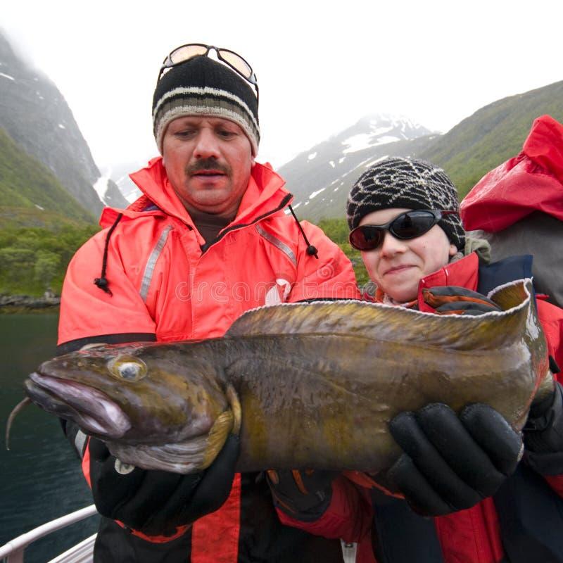 Troféu da pesca - torsk foto de stock