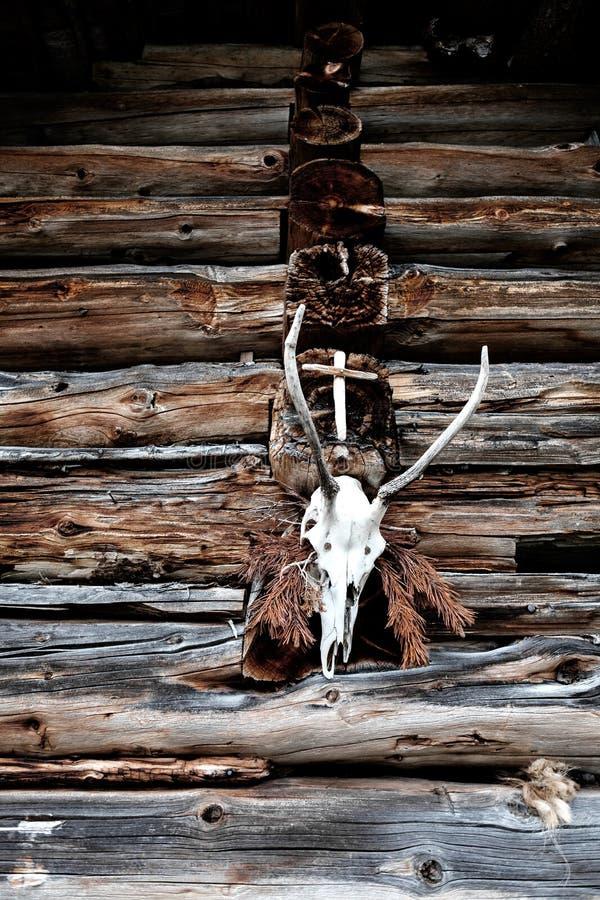 Troféu principal dos cervos com uma cruz de madeira em um estábulo fotografia de stock royalty free