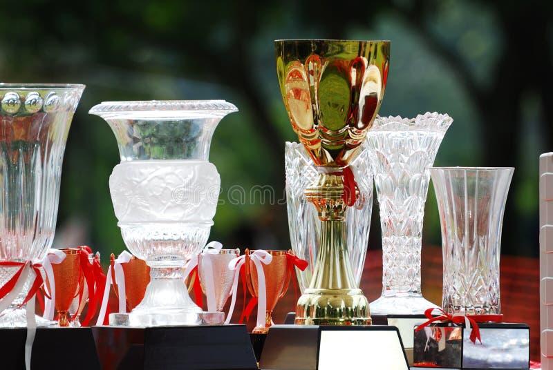 Trofea fotografia royalty free