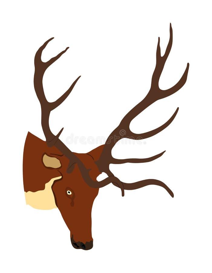 Trofeo della testa dei cervi con l'illustrazione vettoriale delle antenne isolata su fondo bianco Renne, orgoglioso Noble Deer ma royalty illustrazione gratis