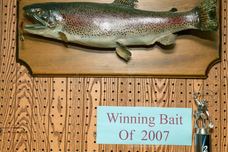 Trofeo montado de los pescados del cebo que gana 2007 imágenes de archivo libres de regalías