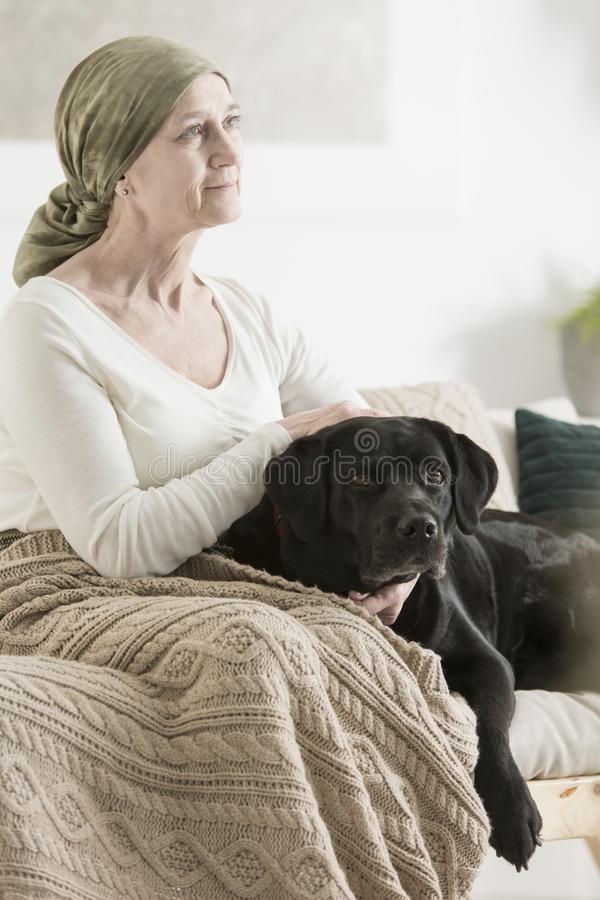 Trogen hund som ligger vid ägaren royaltyfria foton