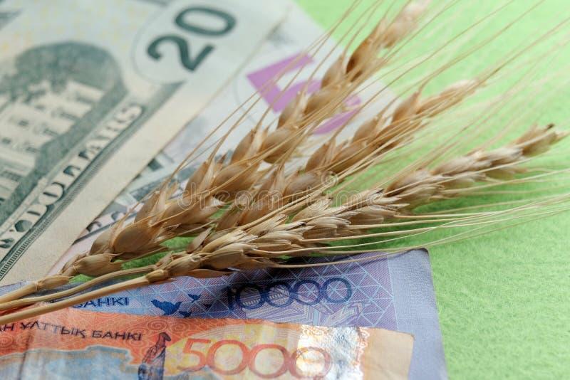 Trois épillets de mensonge de blé sur les billets de banque des Etats-Unis et du Kazakhstan Vingt-cinq dollars et quinze mille te images libres de droits