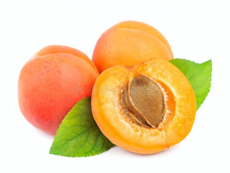 Trois abricots photo libre de droits